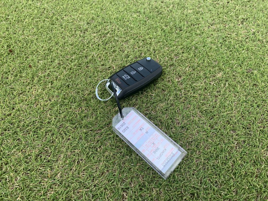 Zoysia Putting Surface