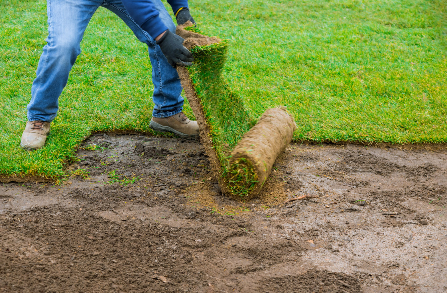 Prepare Your Soil for Sod